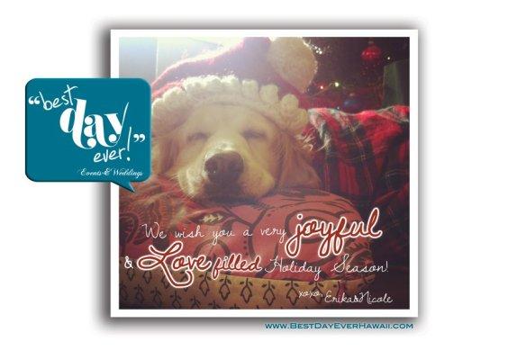 happy holidays, merry christmas, christmas 2011