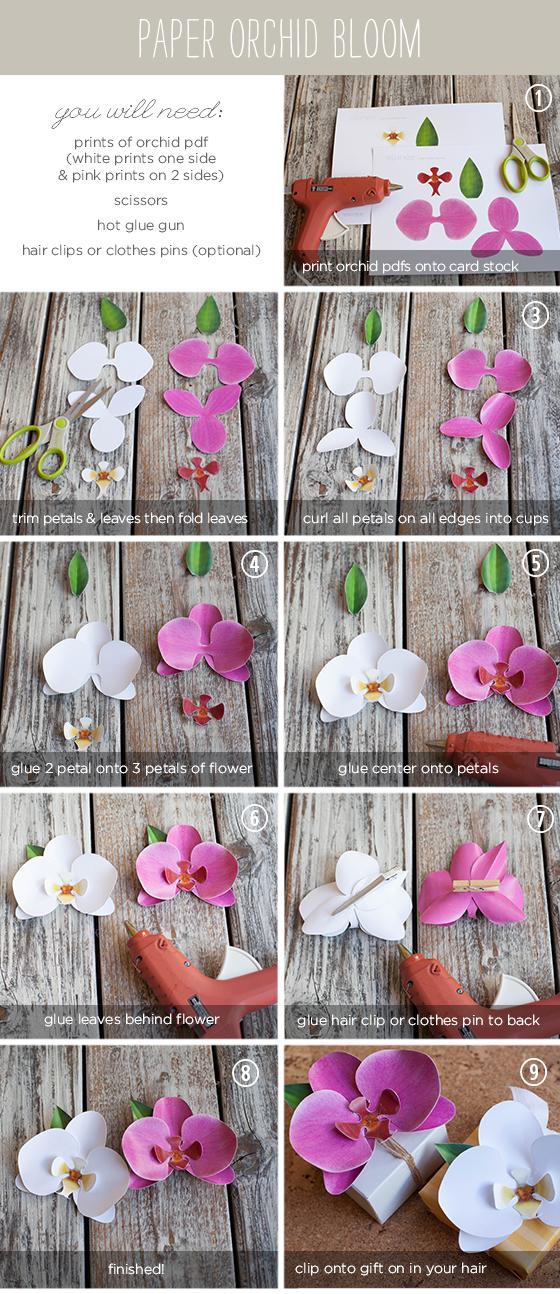 Цветы своими руками из бумаги с инструкцией