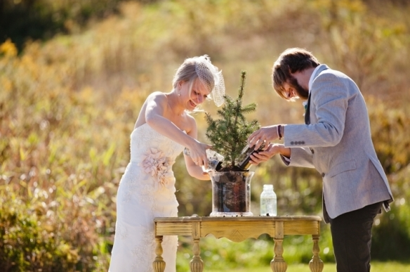 hawaii weddings, go green, green weddings, plant a tree